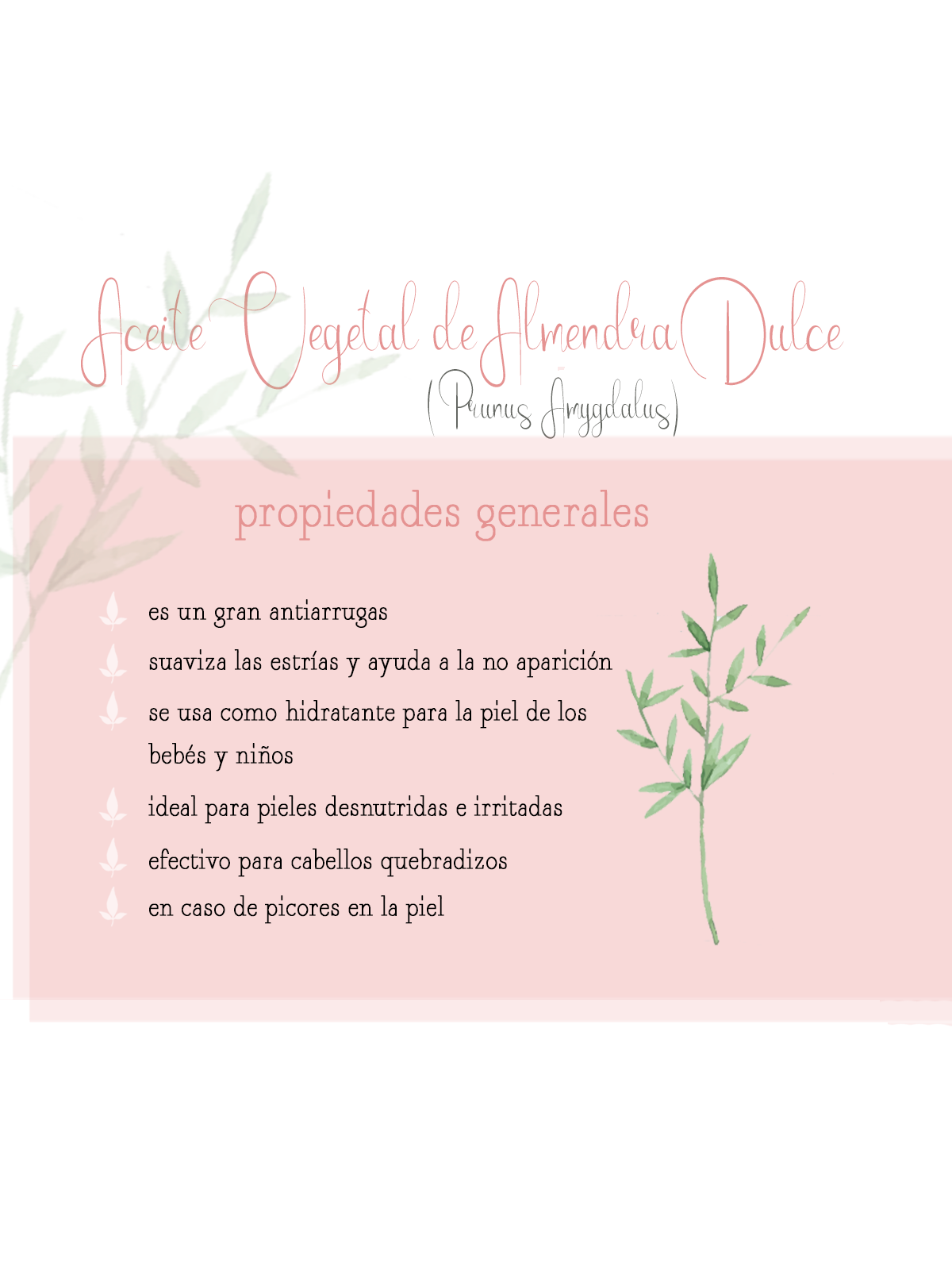 aceite vegetal almendra dulce aromaterapia aceites vegetales by naturals