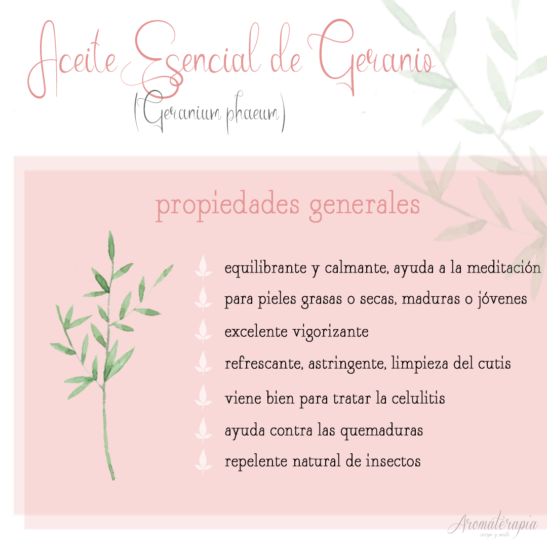 aromaterapia aceite esencial geranio by naturals remedio natural