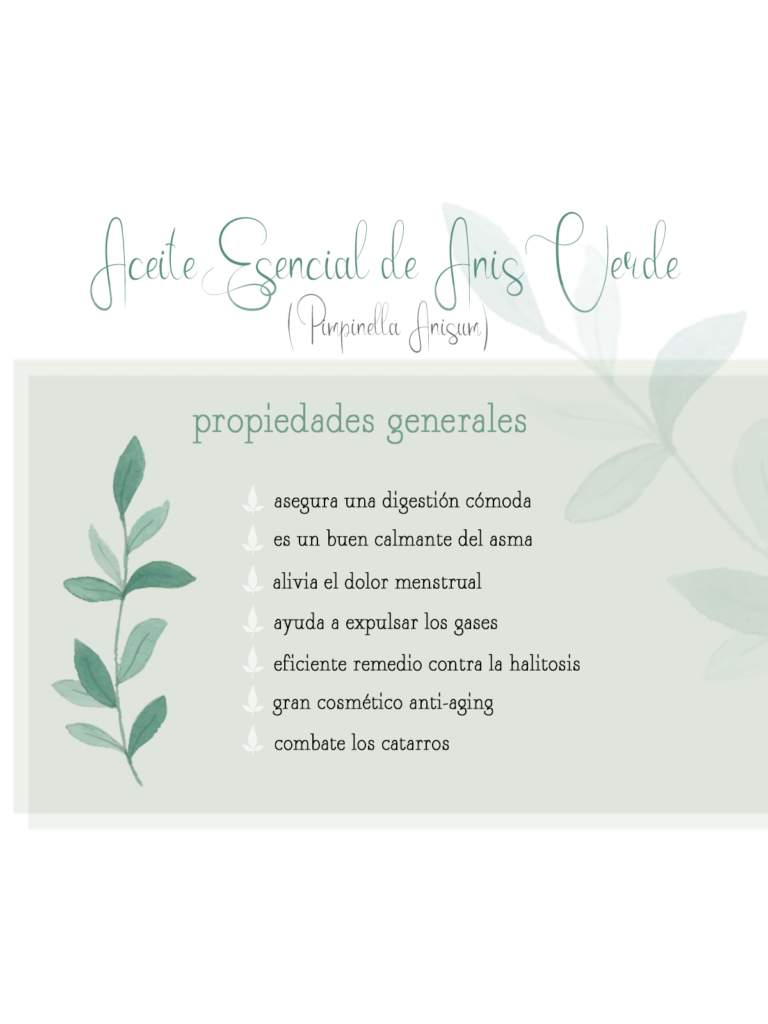 aromaterapia by naturals aceite esencial anis verde remedios naturales