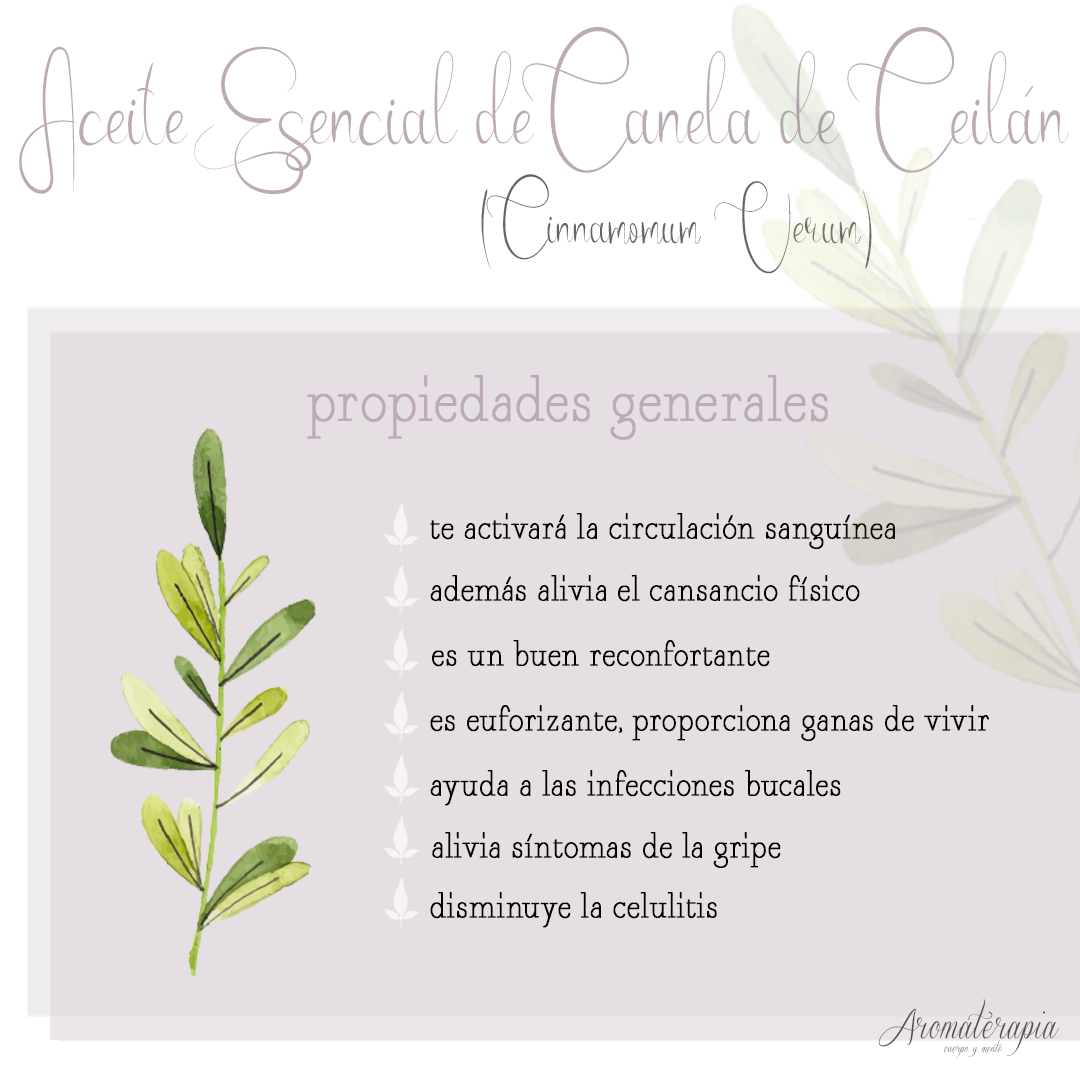 aromaterapia by naturals aceite esencial canela ceilan remedios naturales